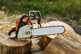 Kurs na pilarki mechaniczne do ścinki drzew